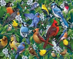 Birds & Blossoms Collage Jigsaw Puzzle