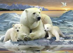 Polar Bears Bears Children's Puzzles