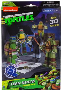 Teenage Mutant Ninja Turtles: Team Ninjas