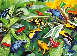 Friendly Frogs Reptiles and Amphibians Jigsaw Puzzle