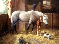 We Have Company Horses Jigsaw Puzzle