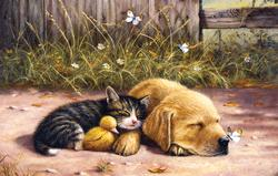 Sleepy Days Dogs Jigsaw Puzzle