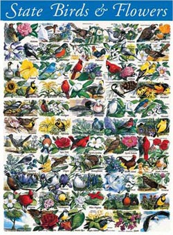 State Birds & Flowers - Scratch and Dent Mother's Day Jigsaw Puzzle