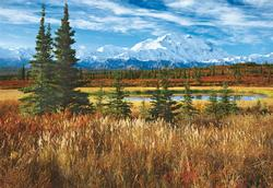 Denali National Park, USA Alaska Jigsaw Puzzle