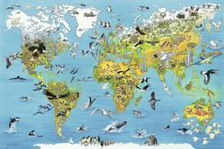 Fascinating Earth, 5000 pcs Maps Jigsaw Puzzle