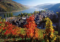 On the River Rhine Lakes / Rivers / Streams Jigsaw Puzzle