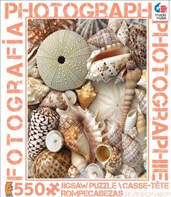 Shells (Photography) Photography Jigsaw Puzzle