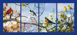 The Seasons Birds Panoramic