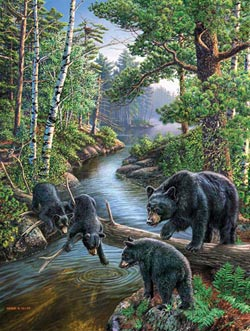 Bear Pause Lakes / Rivers / Streams Jigsaw Puzzle