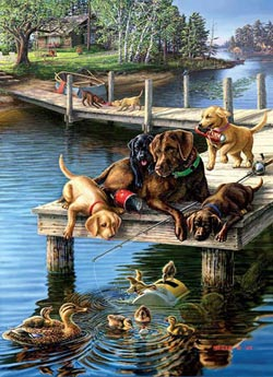 Summer School Dogs Jigsaw Puzzle