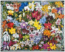 Orchids Mother's Day Jigsaw Puzzle