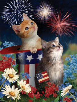 Patriotic Kittens - Scratch and Dent Fourth of July Jigsaw Puzzle