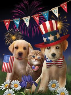 Yankee Doodle and Dandy Fireworks Jigsaw Puzzle