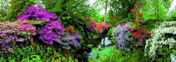 Bodnant Garden Lakes / Rivers / Streams Panoramic