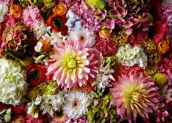 Airy Dahlia Photography Jigsaw Puzzle