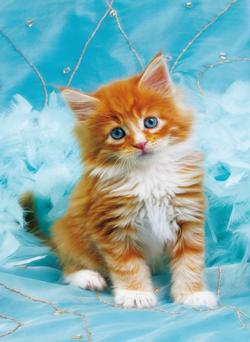 Fluffy Kitten Cats Miniature Puzzle