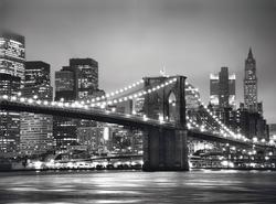 New York Monochromatic Jigsaw Puzzle