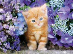 Ginger Cat in Flowers Animals Jigsaw Puzzle