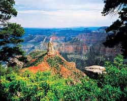 Grand Canyon North Rim Grand Canyon Jigsaw Puzzle