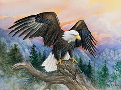Eagle Gaze Eagles Jigsaw Puzzle