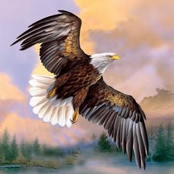 God Shed his Grace Eagles Jigsaw Puzzle