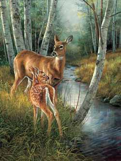 Birch Creek Wildlife Jigsaw Puzzle