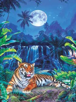 Eyes of the Tiger Waterfalls Jigsaw Puzzle