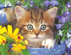 Garden Helper Kittens Jigsaw Puzzle