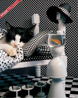 Checkerboard Cat Photography Jigsaw Puzzle