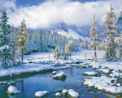 Winter Paradise Landscape Jigsaw Puzzle