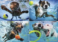 Underwater Dogs 2 Photography Jigsaw Puzzle