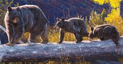 Follow Me Wildlife Jigsaw Puzzle