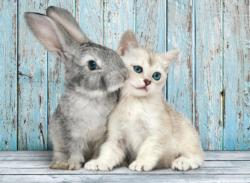Cat and Bunny Other Animals Jigsaw Puzzle