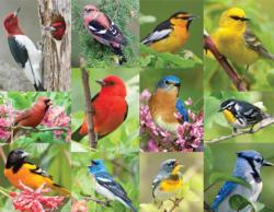 Birds of A Feather Collage Jigsaw Puzzle