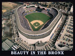 Beauty in the Bronx New Product - Old Stock