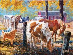 McTigue's Horses Horses Jigsaw Puzzle