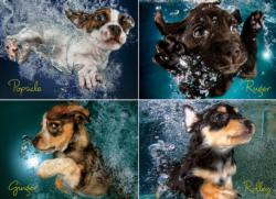 Underwater Puppies Baby Animals Jigsaw Puzzle