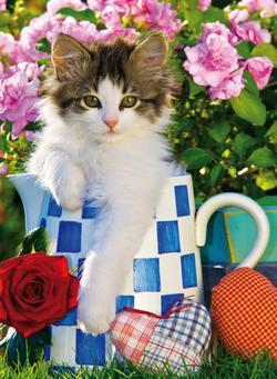 Tabby Kitten Summer Jigsaw Puzzle