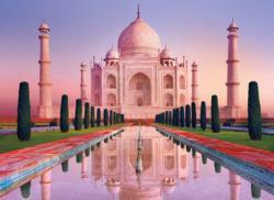 Taj Mahal - Scratch and Dent Taj Mahal Jigsaw Puzzle