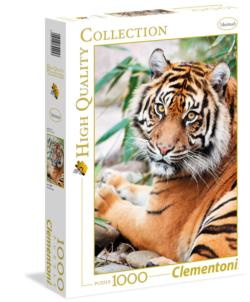 Sumatran Tiger - Scratch and Dent Asia Jigsaw Puzzle