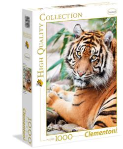 Sumatran Tiger Asia Jigsaw Puzzle