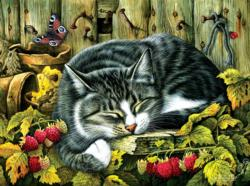 Siesta Cats Jigsaw Puzzle