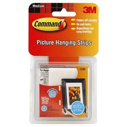 3M Picture Hanging Strips Accessory