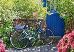 Country Outing By Bike Flowers Jigsaw Puzzle