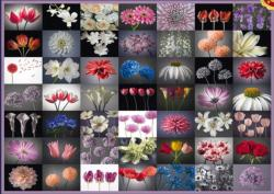 Floral Greeting Collage Jigsaw Puzzle
