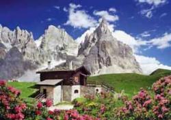 Segantini Hut, Dolomites Flowers Jigsaw Puzzle