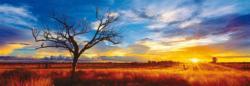 Desert Oak At Sunset Sunrise / Sunset Panoramic Puzzle