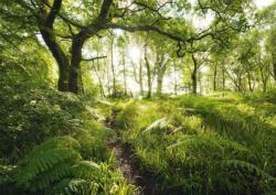 The enchanted path Forest Jigsaw Puzzle