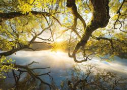 Embrace of Gold Lakes / Rivers / Streams Jigsaw Puzzle