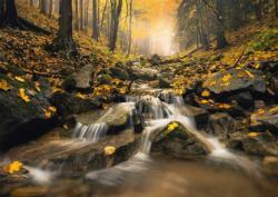 Fabulous Brook Lakes / Rivers / Streams Jigsaw Puzzle